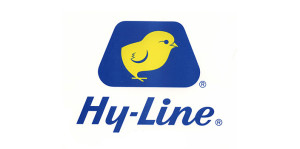 hy-line-international