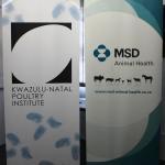 KZNPI + MSD LOGOS