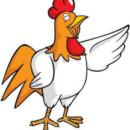 Poultry Production Course