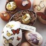 KZNPI-Easter Eggs
